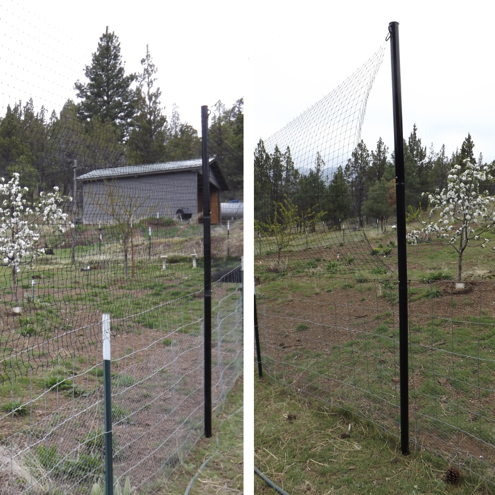 How to install poles for fence